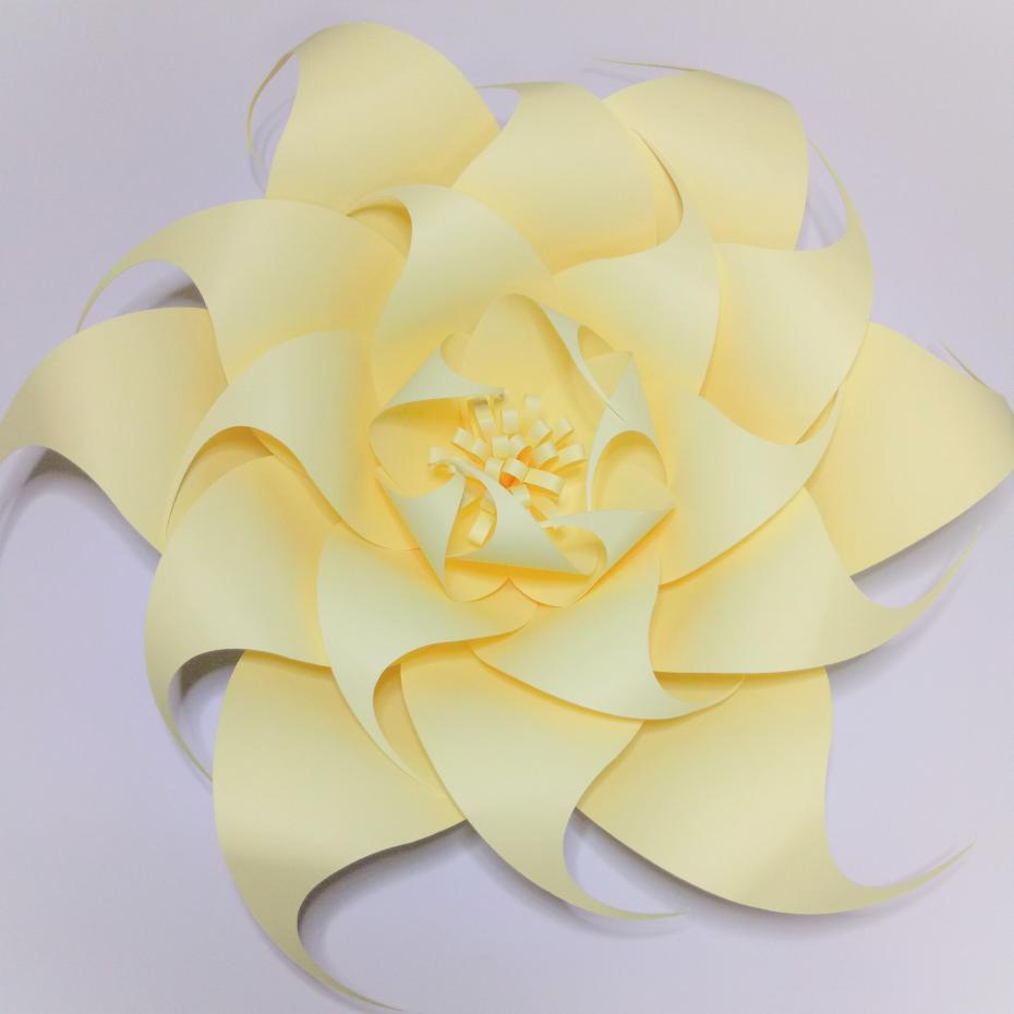 Easy Diy Yellow 9pcs Giant Paper Flowers Backdrop 3pcs Leaves For