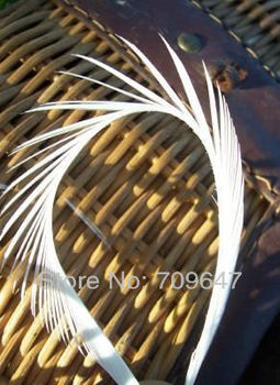 Feathers for crafts!200pcs/Lot white feathers, LOOSE BRIGHT WHITE STRIPPED GOOSE BIOTS Fly Tying 6-8 15-20cm
