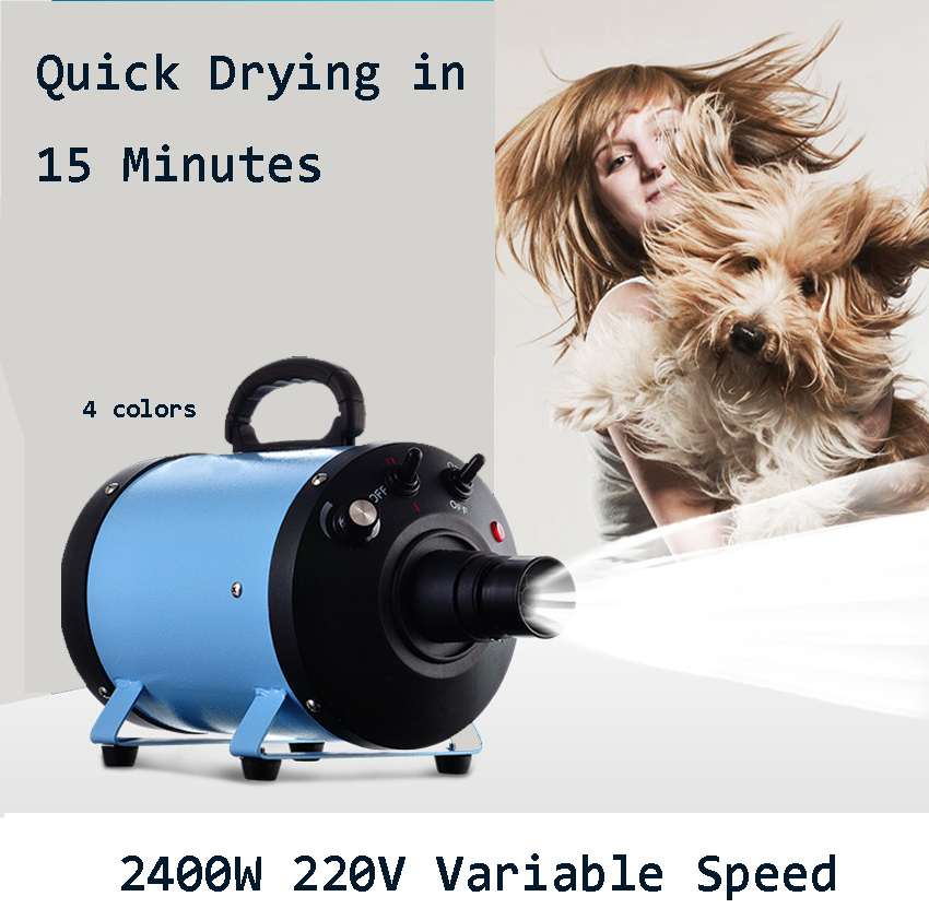 Hair Dryer Motors 2016 Brand Warranty Pet Hair Dryer Blower Sale Cs 2400w With Eu Plug Variable Speed Quickly Drying 110v-230v  2017 new 5 in 1 sets brand cheap dog grooming dryer cheap pet hair dryer blower 220v 110v 2400w eu plug pink blue color