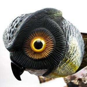 Image 5 - Натуральная поддельная сова, приманка, смочок, птица, вредители с движущимися крыльями, Реалистичная пугающая птица, крыса, мыши, грызуны