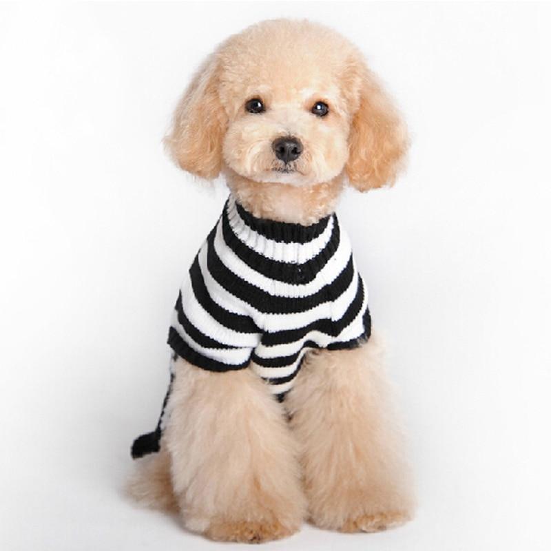 Encantador Patrones De Punto Jersey Gratis Para Perros Viñeta ...