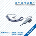 Pen-like electrode for Haihua