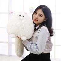 30CM/1 Pcs Nagao Cute Chubby Cat Doll Simulation Soft Persian Cats Plush Toys Boys&Girls Beautiful Birthday Gift