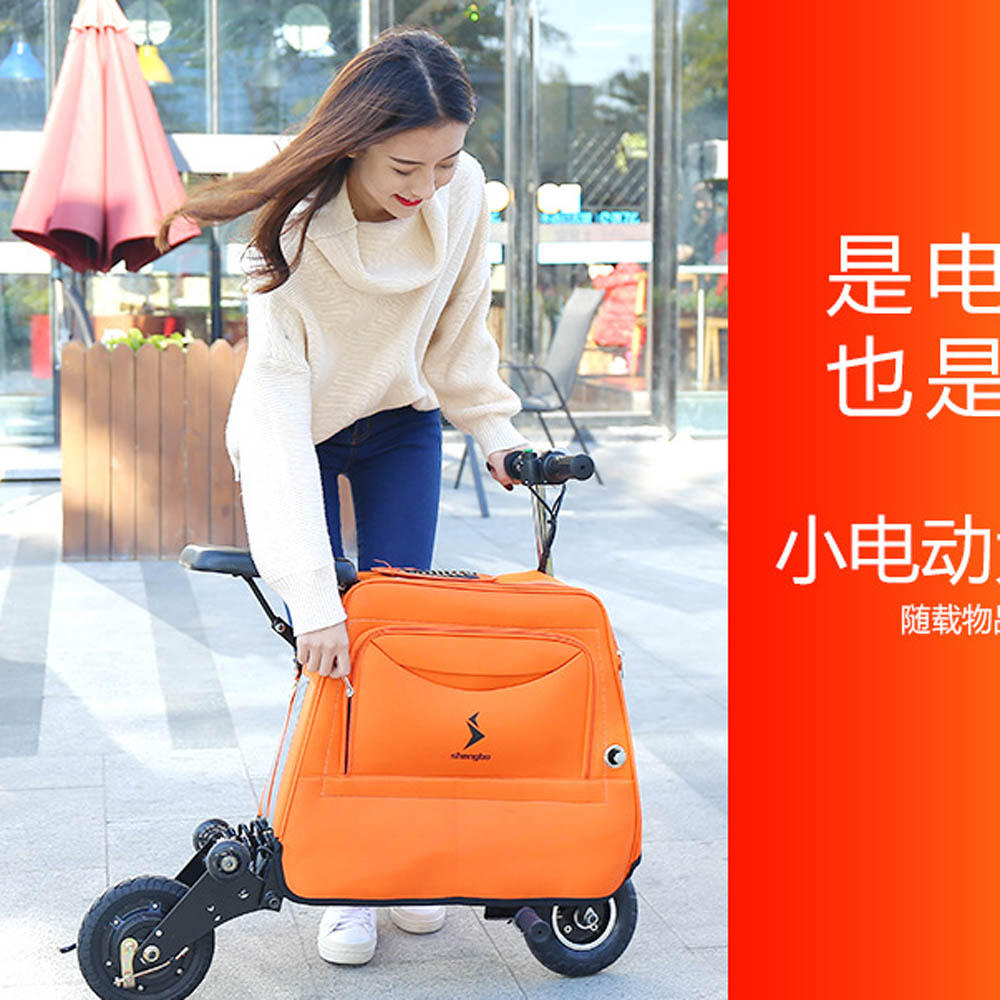 LUGGAGE SCOOTER (6)
