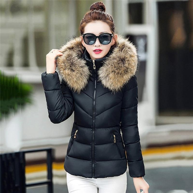 Где купить женскую зимнюю куртку недорого