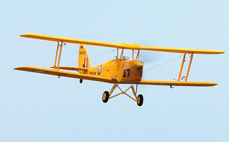 Dynam 1270 MM Tiger Moth RC PNP Propeller Vliegtuig W/Motor ESC Servo W/O Batterij TH03656-in RC Vliegtuigen van Speelgoed & Hobbies op  Groep 2