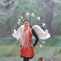 overall length 200cm angel wings feathers wings,Model Catwalk Stage Cosplay Performance Shooting film Props party gift a1964