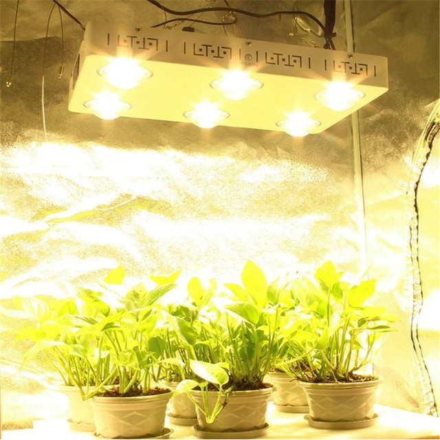 CREE CXB3590 100W 600W COB LED Grow Light Spectrum เต็ม 72000LM = HPS 1000W ปลูกโคมไฟสำหรับเต็นท์ในร่ม Hydroponics Plant Growth