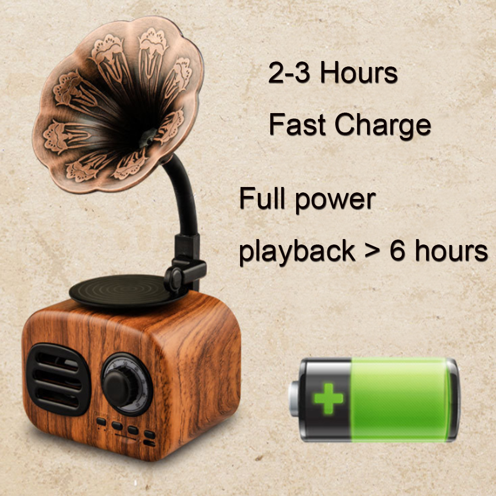 Retro-Gramophone-Bluetooth-Speaker-Wireless-FM-Radio-Support-FT-Cards-Long-Standby-Speakers-Good-Gift-p30 (2)