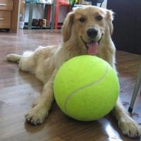 Adeeing 9.5 Inch Dog Bóng Tennis Khổng Lồ Pet Đồ Chơi Dog Nhai Bóng Đồ Chơi cho Pet Đào Tạo Nguồn Cung Cấp