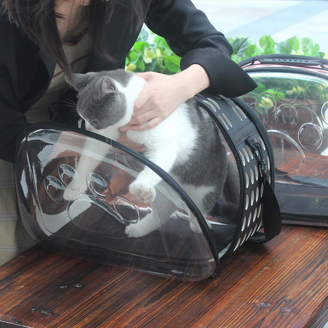 Cat's Transparent Design Carrier