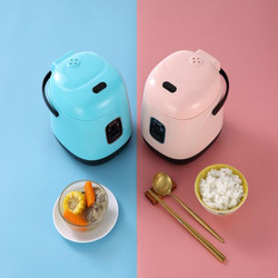 220V Mini Portable Electric Rice Cooker Non-stick Inner 1.2L Multifunctional Electric Cooking Machine EU/AU/UK/US Plug