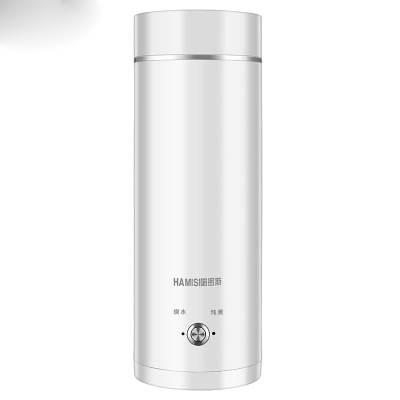 Portable Travel Electric Water Kettle Mini Thermos Smart Teapot Heating Cup Milk Boiling Boiler Stainless Steel Metal Warmer