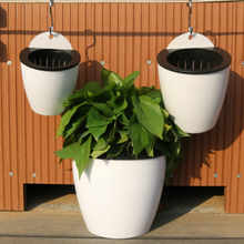 Hanging Plastic Self-Watering Wall Planter