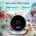 Daytech Wireless Wifi HD IP Camera 720P Surveillance Camera Motion Detection Night Vision Two Way Audio P2P ONVIF DT-C8814
