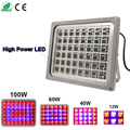 12W/40W/60W/100W AC85~265V Red+Blue LED Waterproof Grow Light For Plants Hydroponics Flower IP65 LED Grow Flood Light Panel
