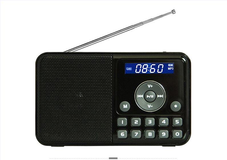 PANDA DS 172 Portable LCD screen Digital player Radio TF card lithium battery Digital song selection