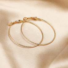 Alloy hoop earrings for women European and American fashion popular female H21