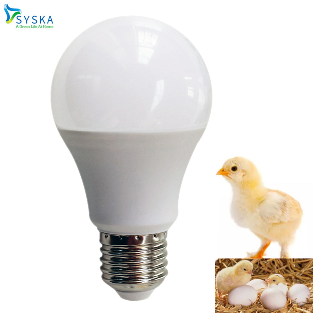 LED Bulb For Chicken E27 9W Warm LED Light Animal Growth Lamp 220V Poultry Piglets Chicken Pet Warm White Bulb |201791 220v 75x90mm 50 150w pet ceramic emitter heated plate appliance reptile poultry heating breeding light bulb for e27 lamp holder