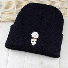 BT21 Beanie Hat