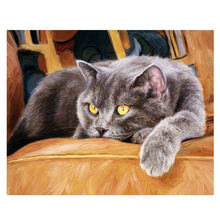 WONZOM Lazy Cat DIY Painting By Numbers Modern Wall Art Paintings For Living Room Animal & Calligraphy 40x50cm Arts