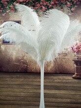 Schöne 100 stücke Qualität big Pole natürlichen weißen straußenfedern 50 55 cm/20 22 zoll hochzeit karneval stage performance bekleidung