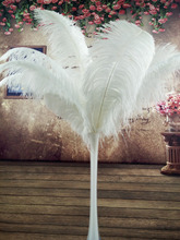 beatiful 100pcs Quality big Pole natural white ostrich feather 50 55cm /20 22inch wedding Carnival stage performance apparel