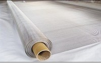 S32205|S31803 duplex stainless steel filter wire mesh,100 Mesh selling