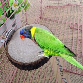 Loro pequeño pájaro Ornamental plataforma varilla con pájaro loro Log Gnawing juguetes escaleras Hamsters plataforma juguetes mascotas productos