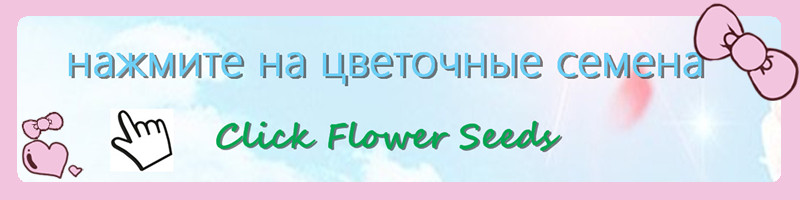 flower seeds 1