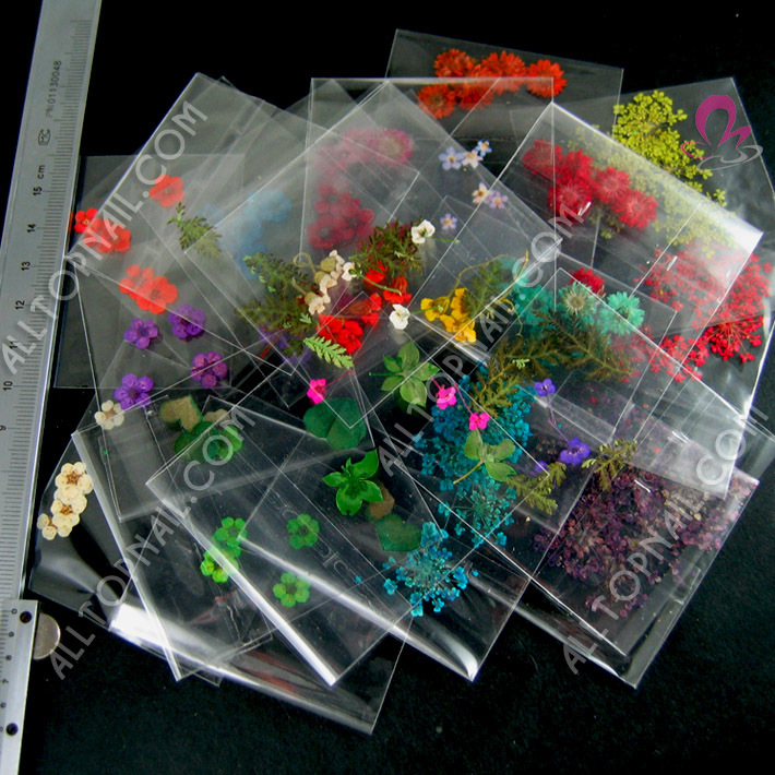 New Assorted Styles Press Dry Real Flower 300Packs Nail Art Natural Dry Flower