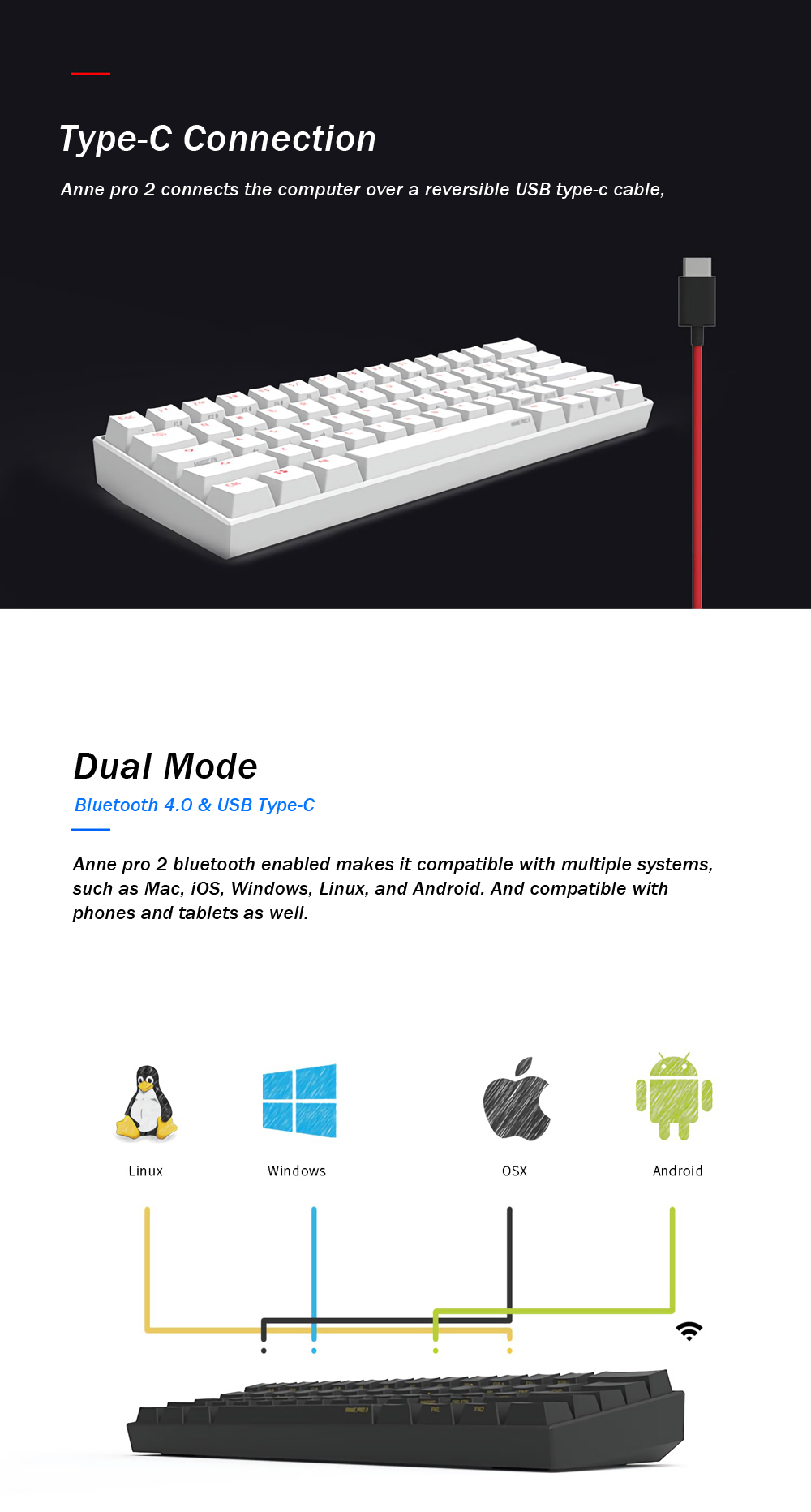 Gateron Switchobins Anne Pro 2 60 Nkro Bluetooth 40 Type C Rgb 8 Prong Switch Wiring Diagram Pto 1 Obins Mechanical Gaming Keyboard Keycap Puller Usb Cable