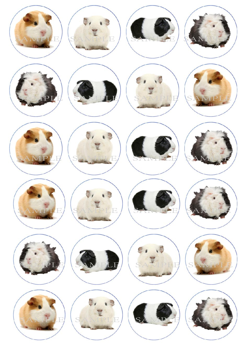 24 Guinea Pig Edible cake topper wafer rice paper cake ...