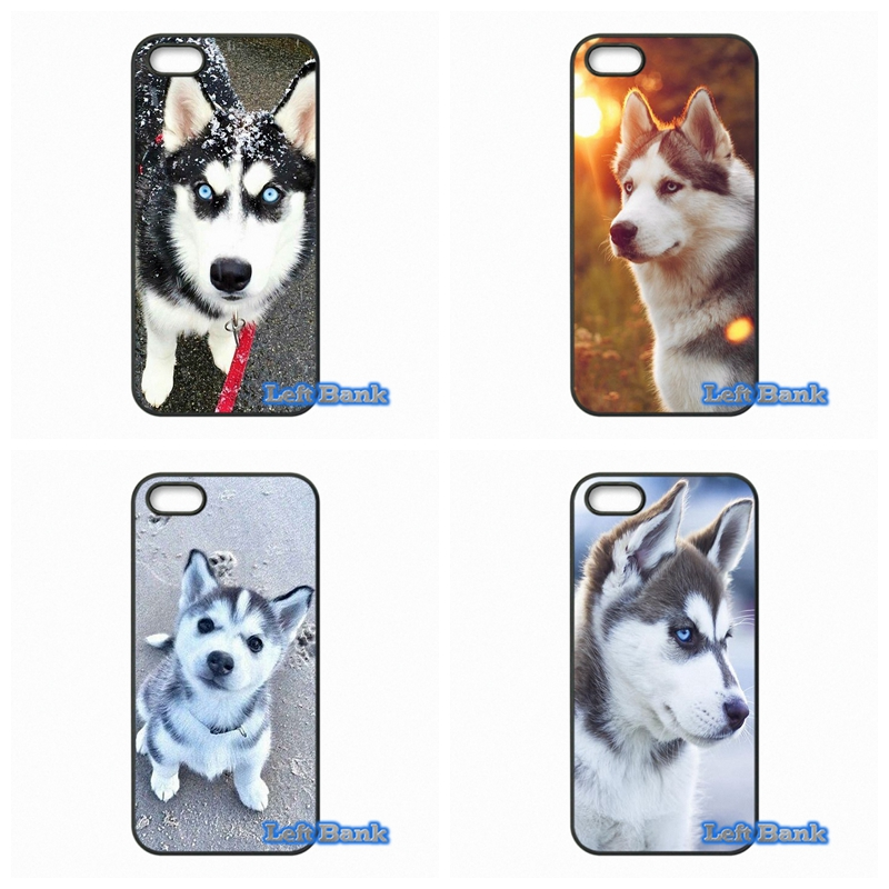 Lovely animal Husky puppy Phone Cases Cover For Apple iPhone 4 4S 5 5S 5C SE 6 6S 7 Plus 4.7 5.5 iPod Touch 4 5 6
