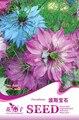 Цветок Чернушка damascena Семена, оригинальной Упаковке 30 шт. Сад бонсай семена цветов, легко Расти ЧЕРНУШКА SATIVA