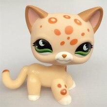 лучшая цена Rare Pet Shop Lps Toys Littlest Short Hair Cat #994 Black Animal Kitten With Blue Eyes Christmas Gift For Kids