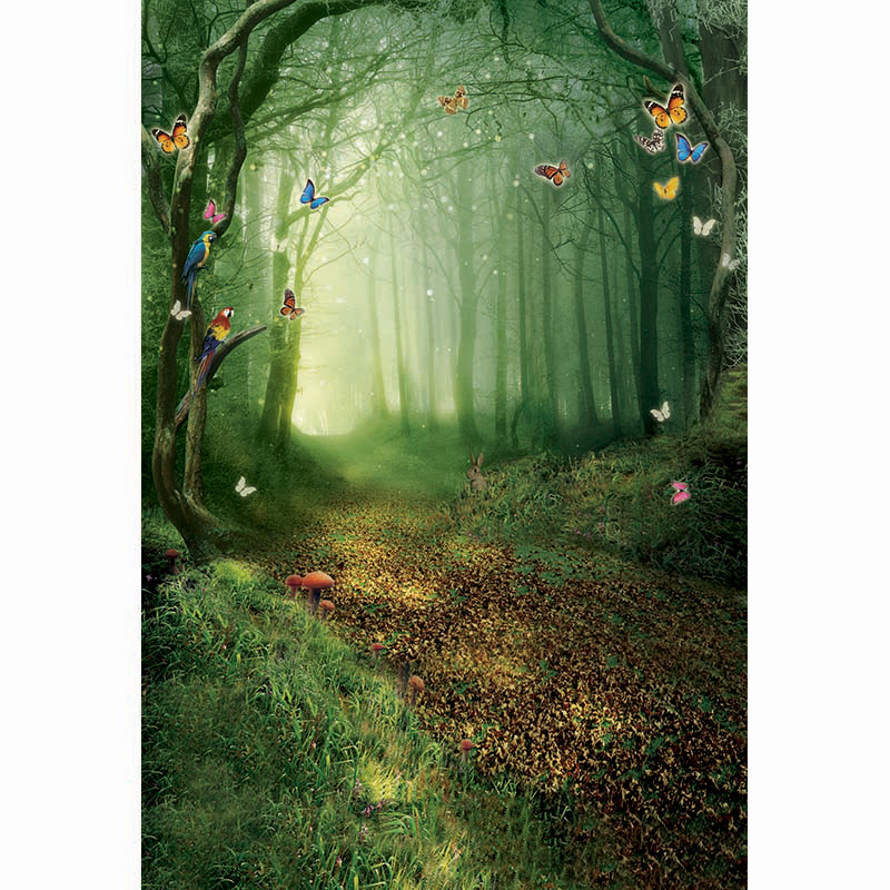Wonderland wallpaper photo background butterfly photography backdrops for photo studio photography background camera fotografica ashanks photography backdrops white screen 3 4m solid background for photo studio 10ft 13ft backdrop for camera fotografica