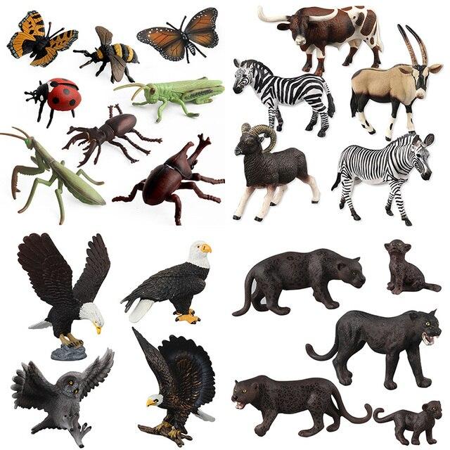 Nueva simulación Animales de plástico modelo águila calva insecto escarabajo araña Biologia biología de educación de aprendizaje juguete decoración Animales