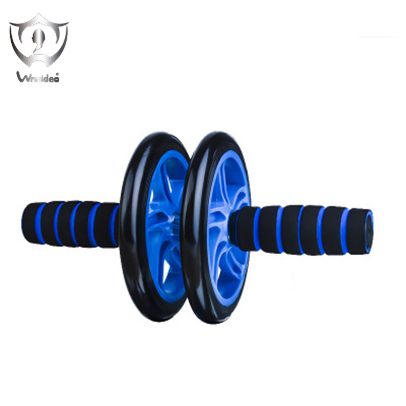 Ab Roller Wheel Abs Carver for Abdominal & Stomach Exercise Training Fitness Equipment for Core Shredding  ZS6-2310