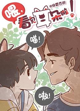 《喂,看见耳朵啦》2018年中国大陆,日本动画动漫在线观看