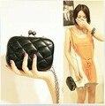 Женщины сумочку Y303 новые моды одной цепи minaudiere 2014 день клатчи для женщин