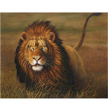 WONZOM Lion Grassland-DIY Oil Painting By Numbers kit,Acrylic Paint,Canvas Painting, Paint 40x50cm