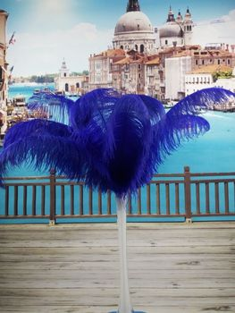 free shipping! 50PCS many natural sapphire ostrich feathers 40-45 cm / 16