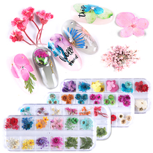 1 Case Natural Dry Flower Nail Art 3D Charms Dried Real Flora Wraps Leaves Multi Color Gel Polish Decorations BEF01-10