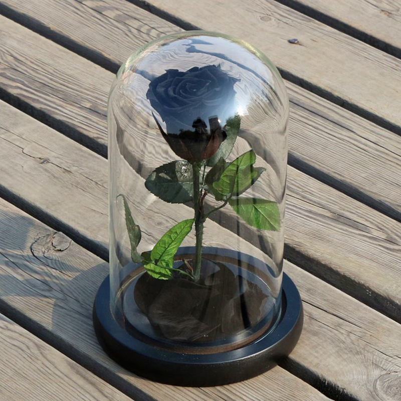 Birthday Gift Beauty and the Beast Red Rose Fallen Petals in Glass Dome on a Wooden Base for Christmas Valentine's Gifts#239781