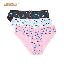 YOUREGINA Women Underwear Panties Cotton Cute Print Sexy Briefs for Ladies Knicker Intimates Underpants Woman 3pcs/lot