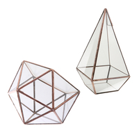 Pack of 2 Tabletop Terrarium Geometric Glass Box Pot Air Plant Planter Succulent DIY Decoration