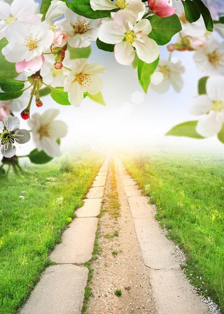 Pear blossom backgrounds sun shinning photography backdrops for photo studio photographic background camera fotografia