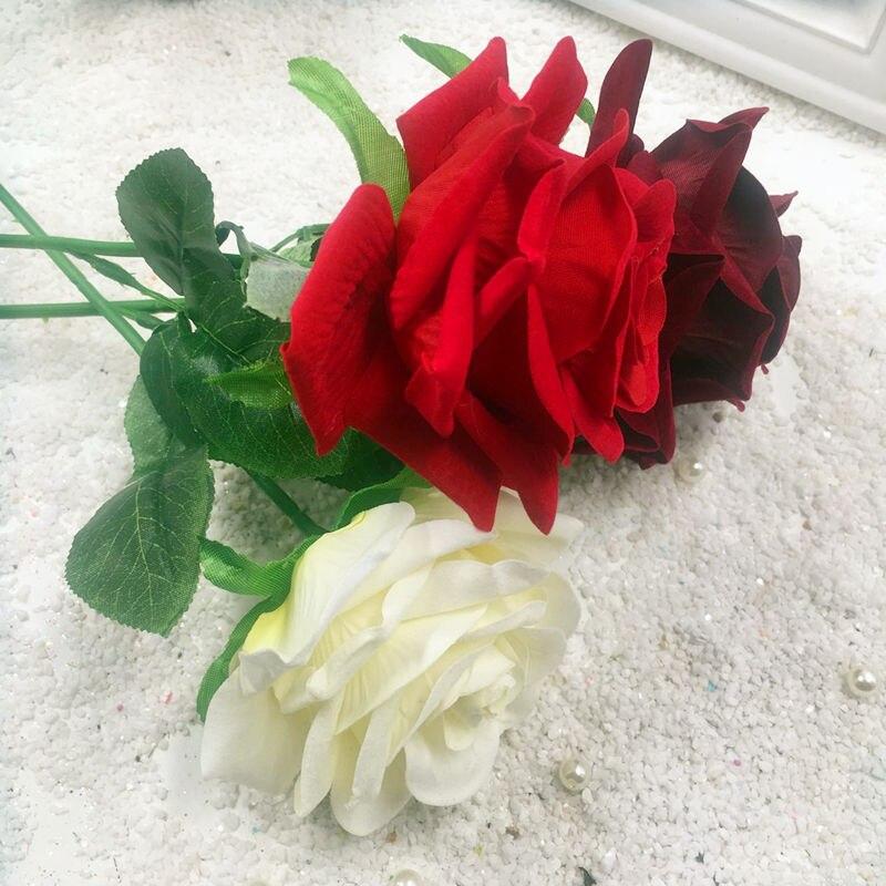 78+ Gambar Orang Megang Bunga Mawar Paling Keren