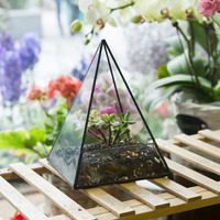 Modern Glass Pyramid Tabletop Succulent Plant Terrarium Box